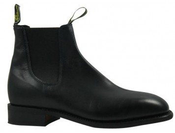 Craftman Comfort Black yearling